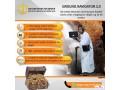 3d-gold-detector-ground-navigator-small-3