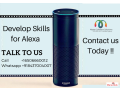 alexa-skill-development-company-small-0