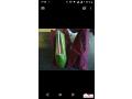 chaussures-brunomagli-small-2