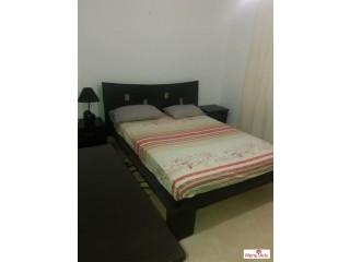 Appartement a 100 dt la nuit