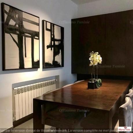magnifique-duplex-richement-meuble-la-marsa-big-2