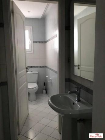 appartement-s3-lac-1-avec-balcon-big-2