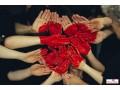 lost-love-spells-caster27760981414-in-kentucky-new-orleans-voodoo-spells-caster-small-3